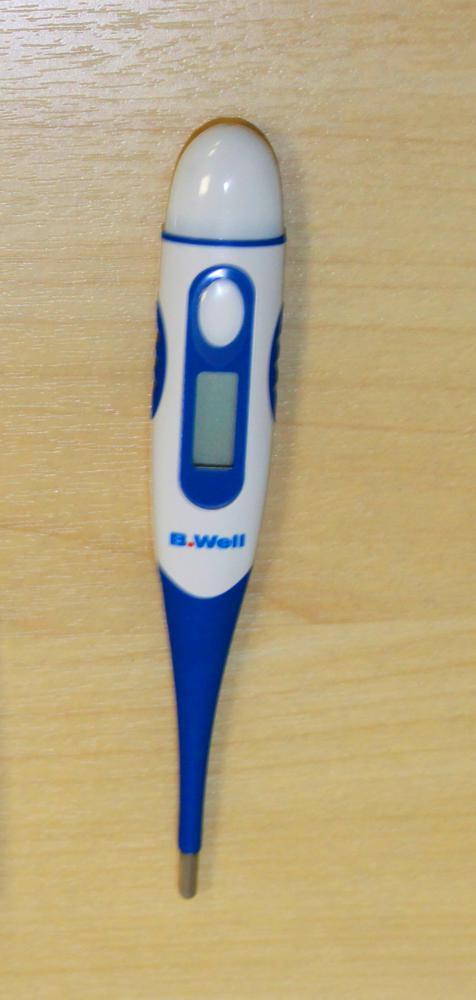 Термометр B.Well WT-04