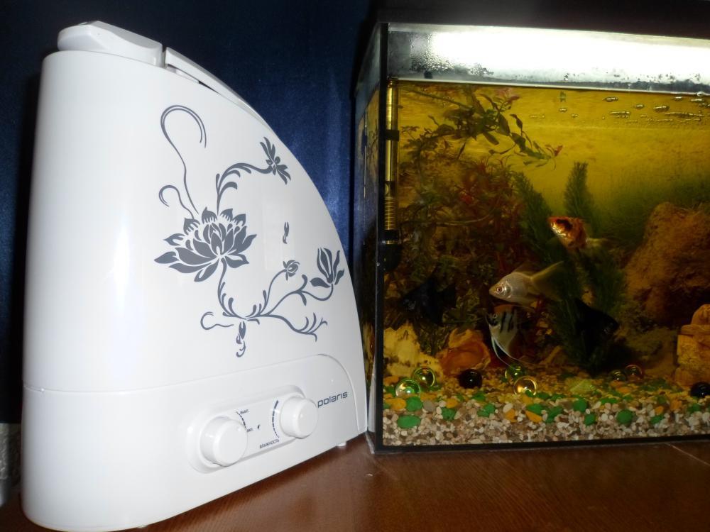 от аквариумного фильтра шум есть, а от увлажнителя воздуха шума нет, мы уже сравнили